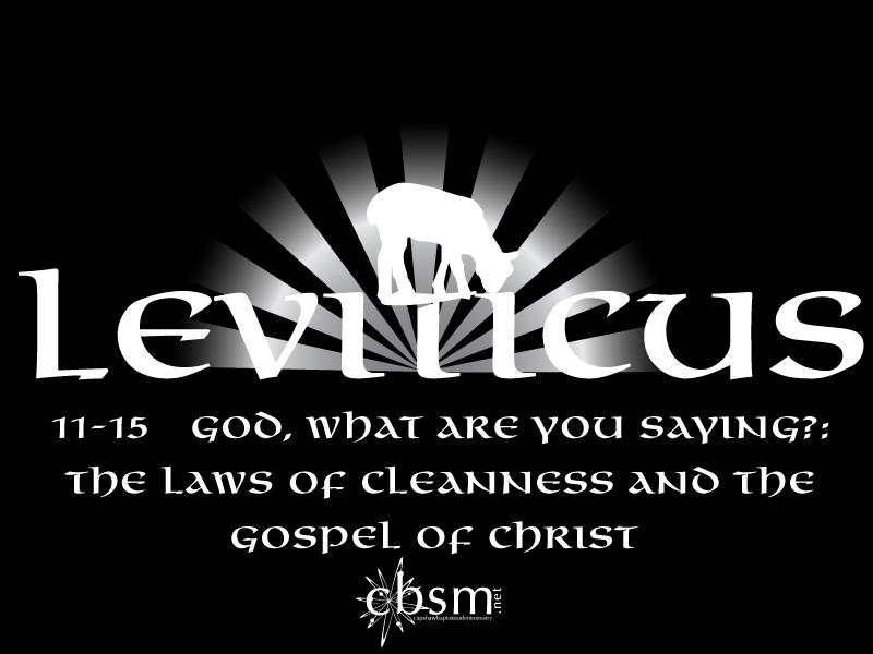 Leviticus 11 44 21 Leviticus 11 15 Clean And