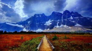 pathway_to_mountain